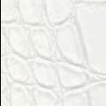 S8 - weiß, glänzend, Krokodil - +125,00€
