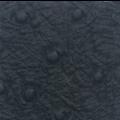 schwarz, Straußenmuster