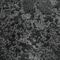 273 - metallic-schwarz, glänzend, Relief