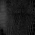 W6 - schwarz, glänzend, Krokodil