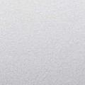 B39 - silber, glänzend, natürlich genarbt